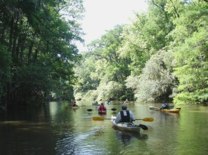 Wildlife paddlers enjoy the outdoors